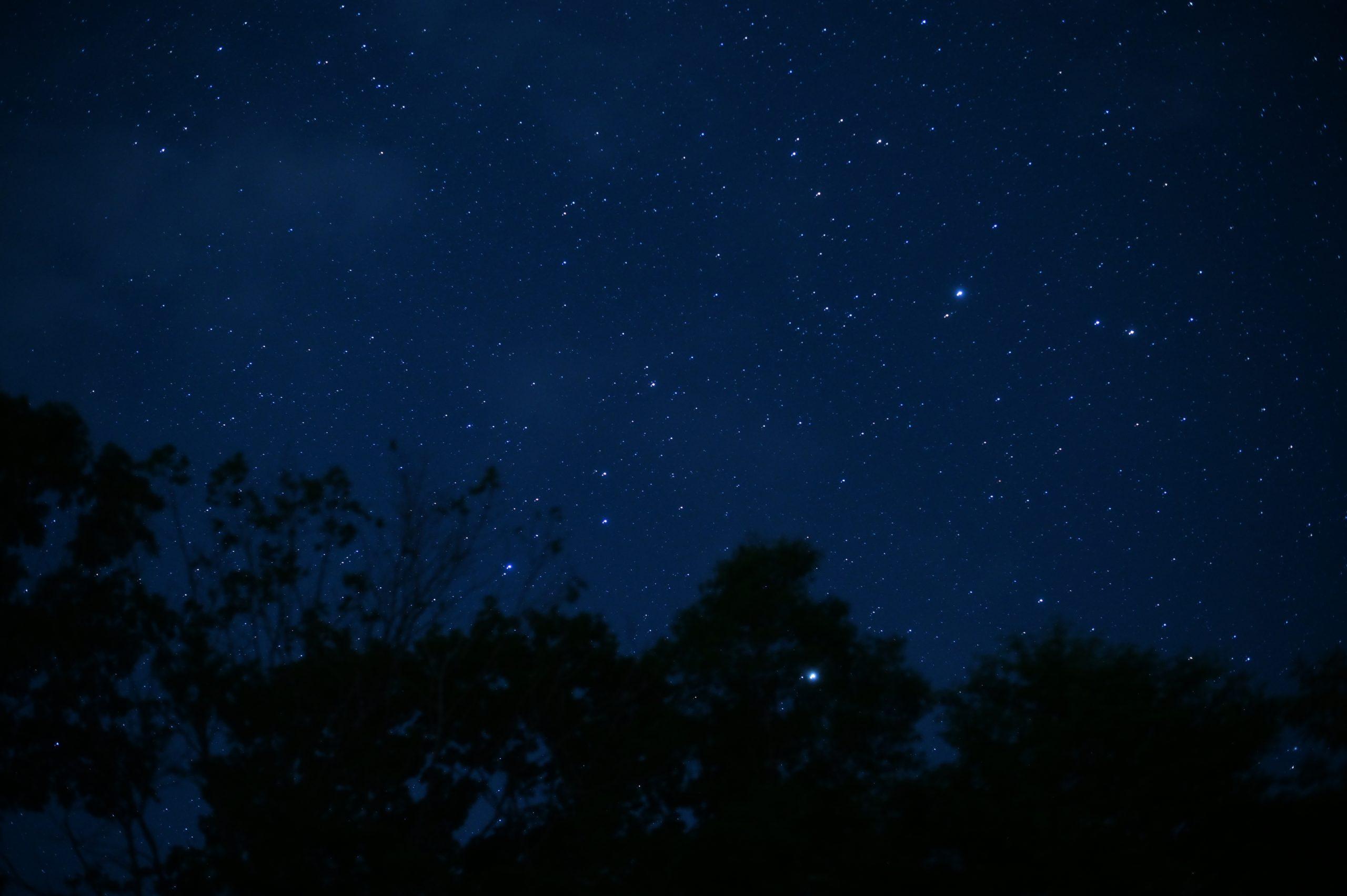 【Kenko】ソフトフィルター「PRO1D PROSOFTON Clear」で夜景に挑戦