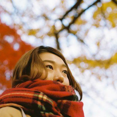 【秋、色撮りどり】秋のモチーフ
