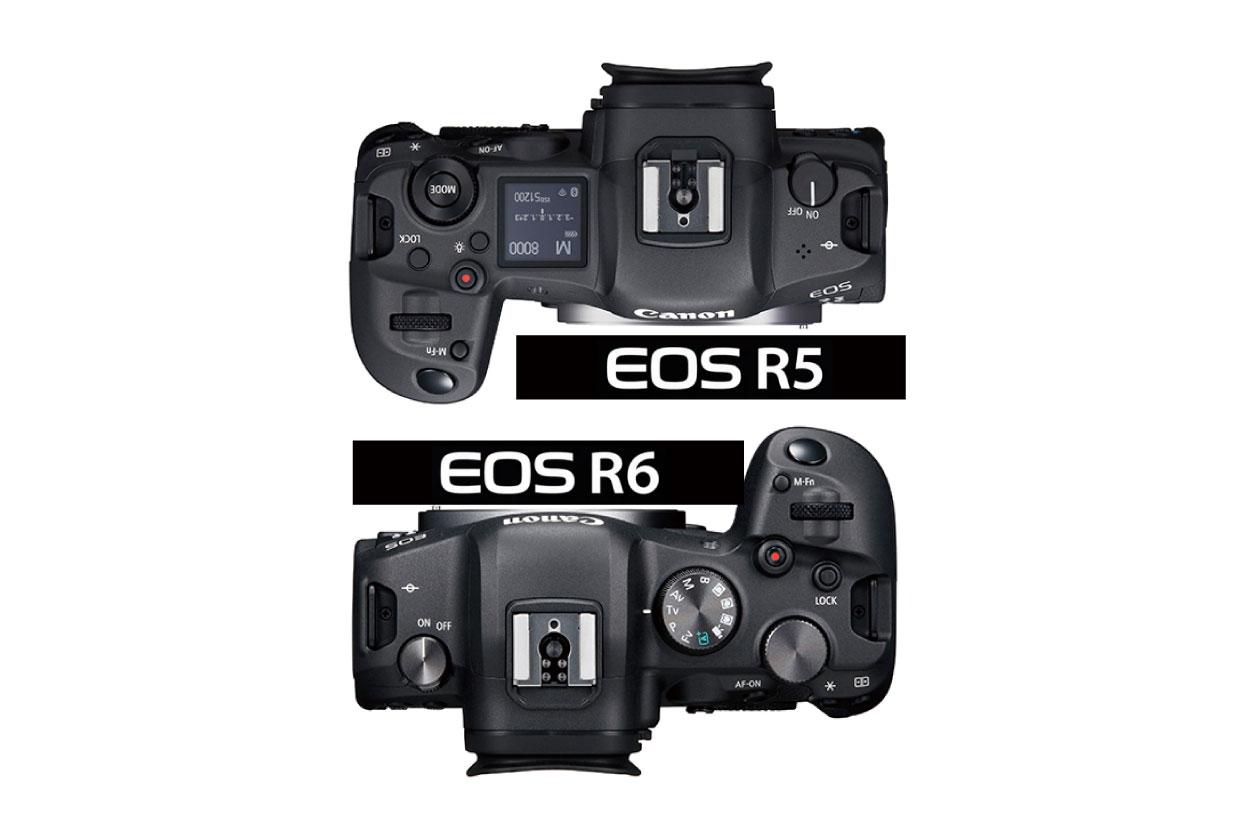 【Canon】 R5 VS R6