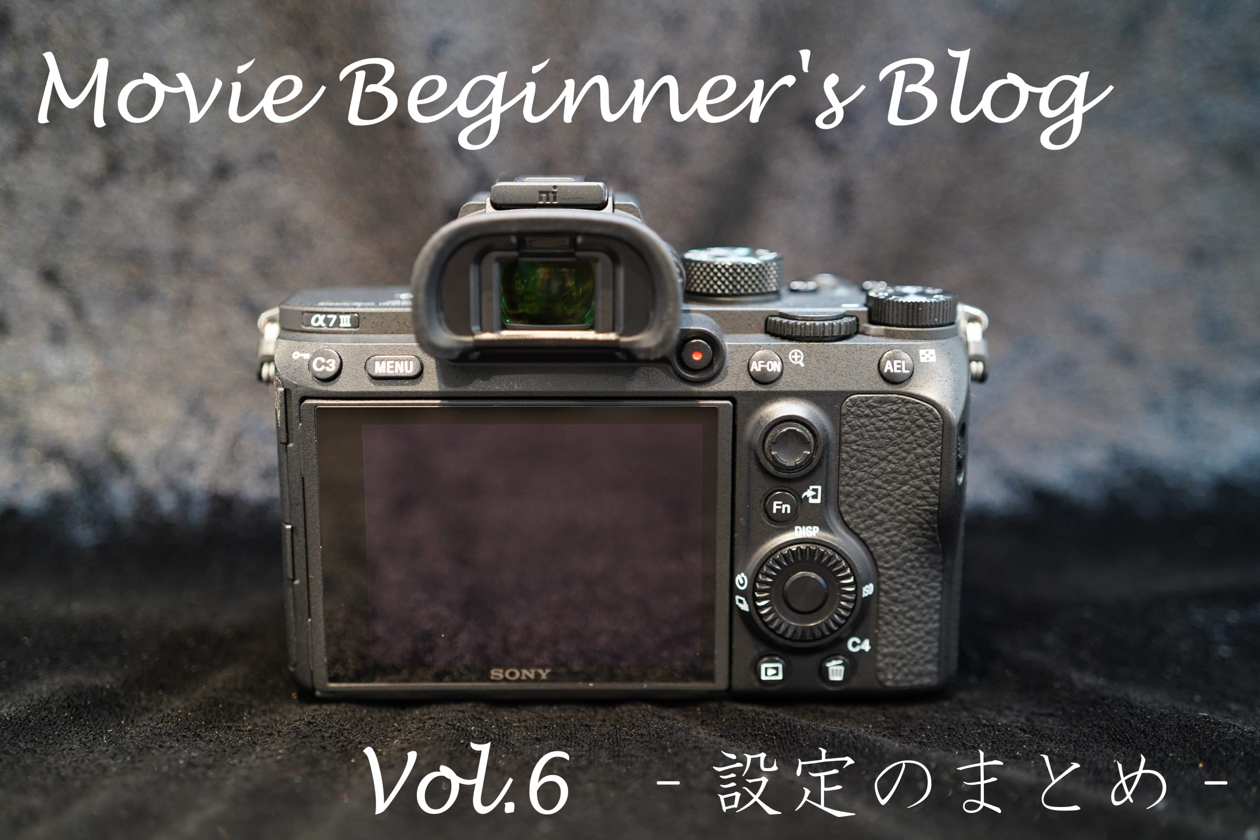 【SONY】Movie Beginner's Blog Vol.6 -設定のまとめ-