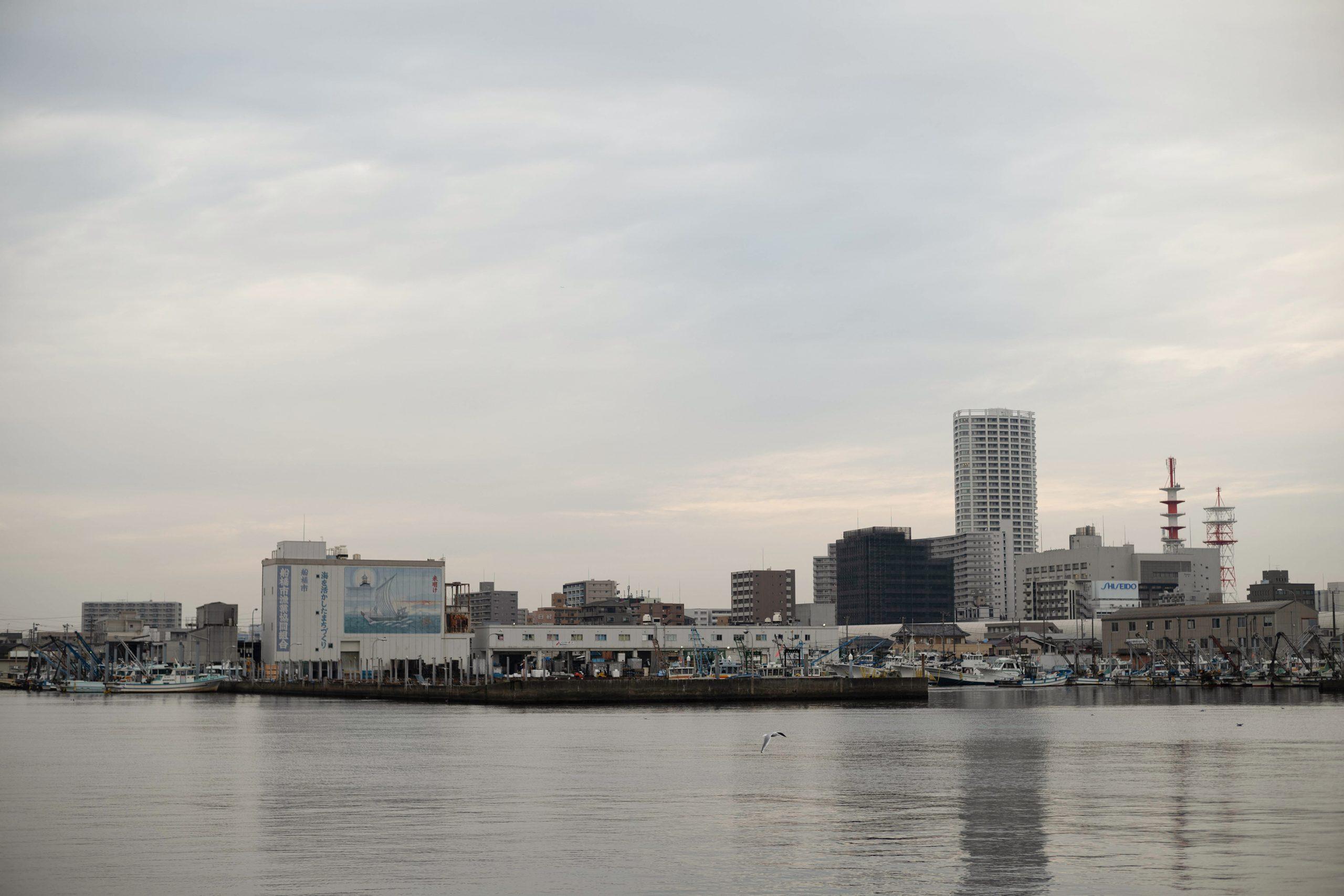 対岸の漁港