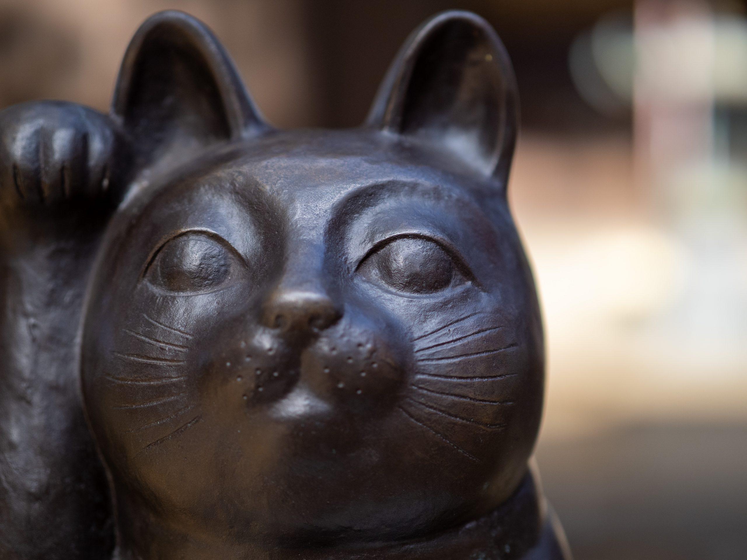 【Go To フォト】招き猫を訪ねてお散歩道
