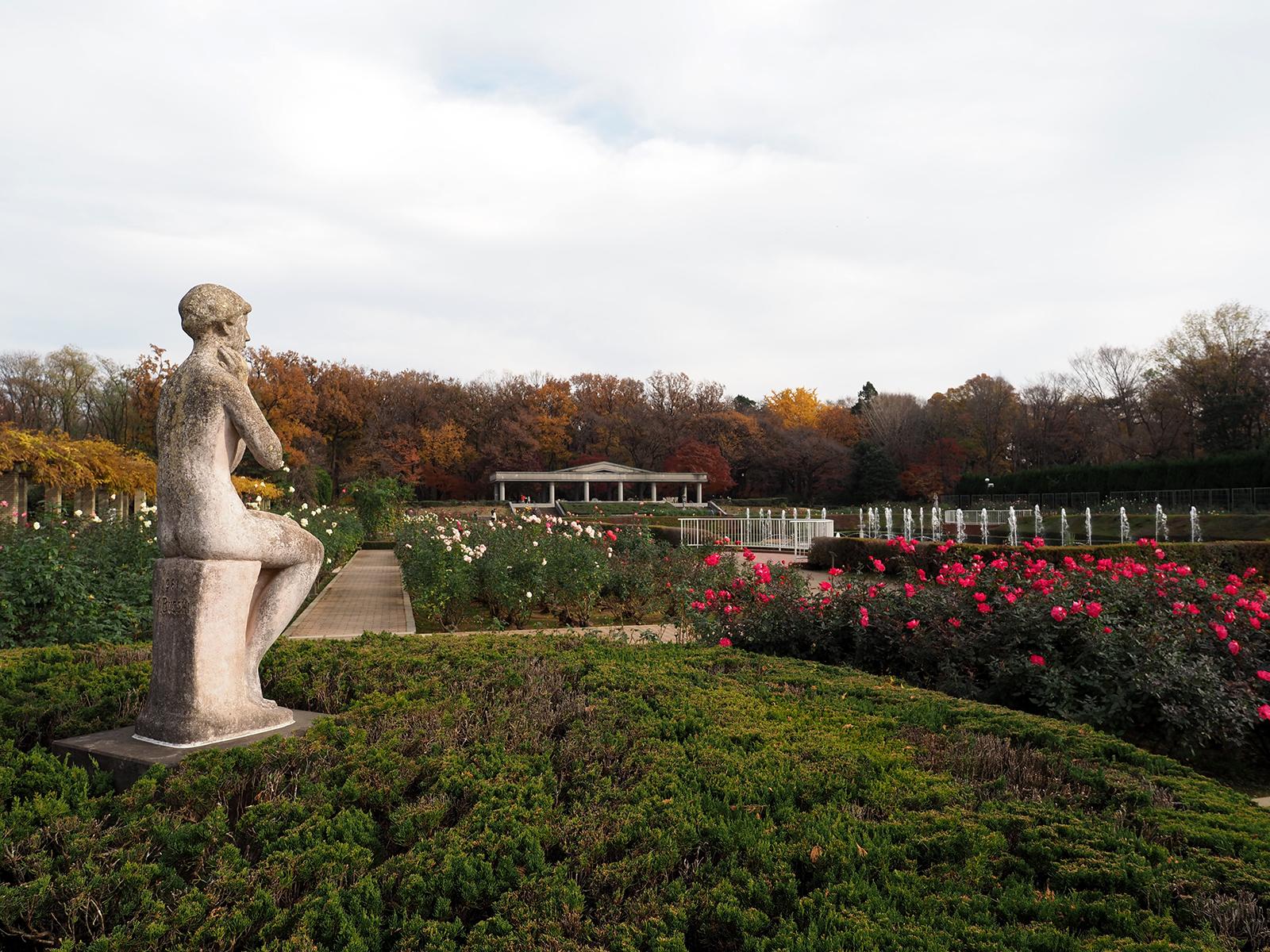 【OLYMPUS】OM-D E-M1 Mark IIで撮り歩き~in 神代植物公園