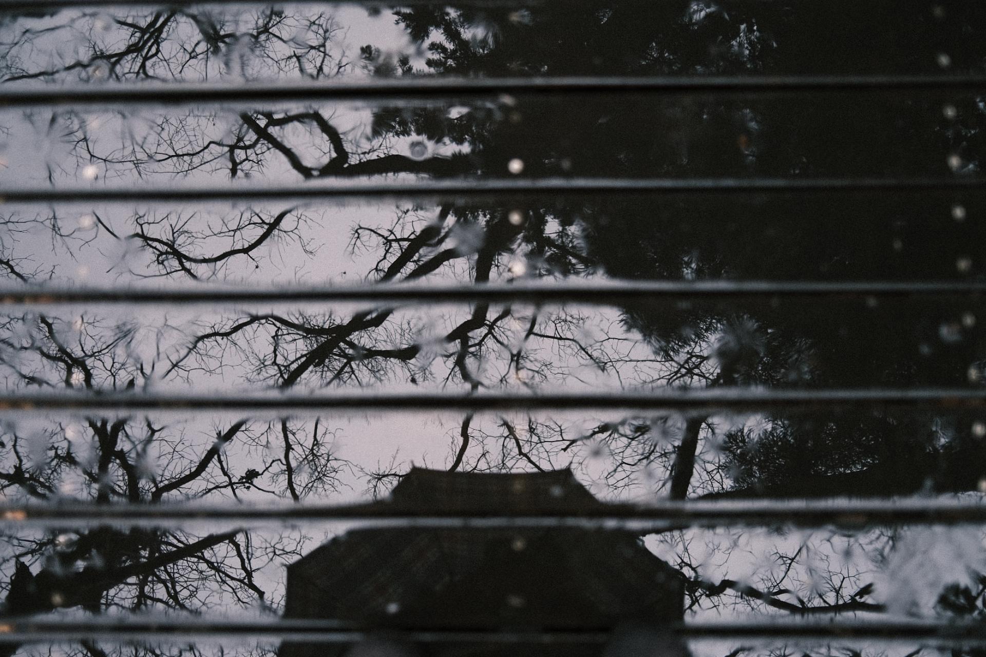 【FUJIFILM】X100Vのクラシックネガのみで雨の日に