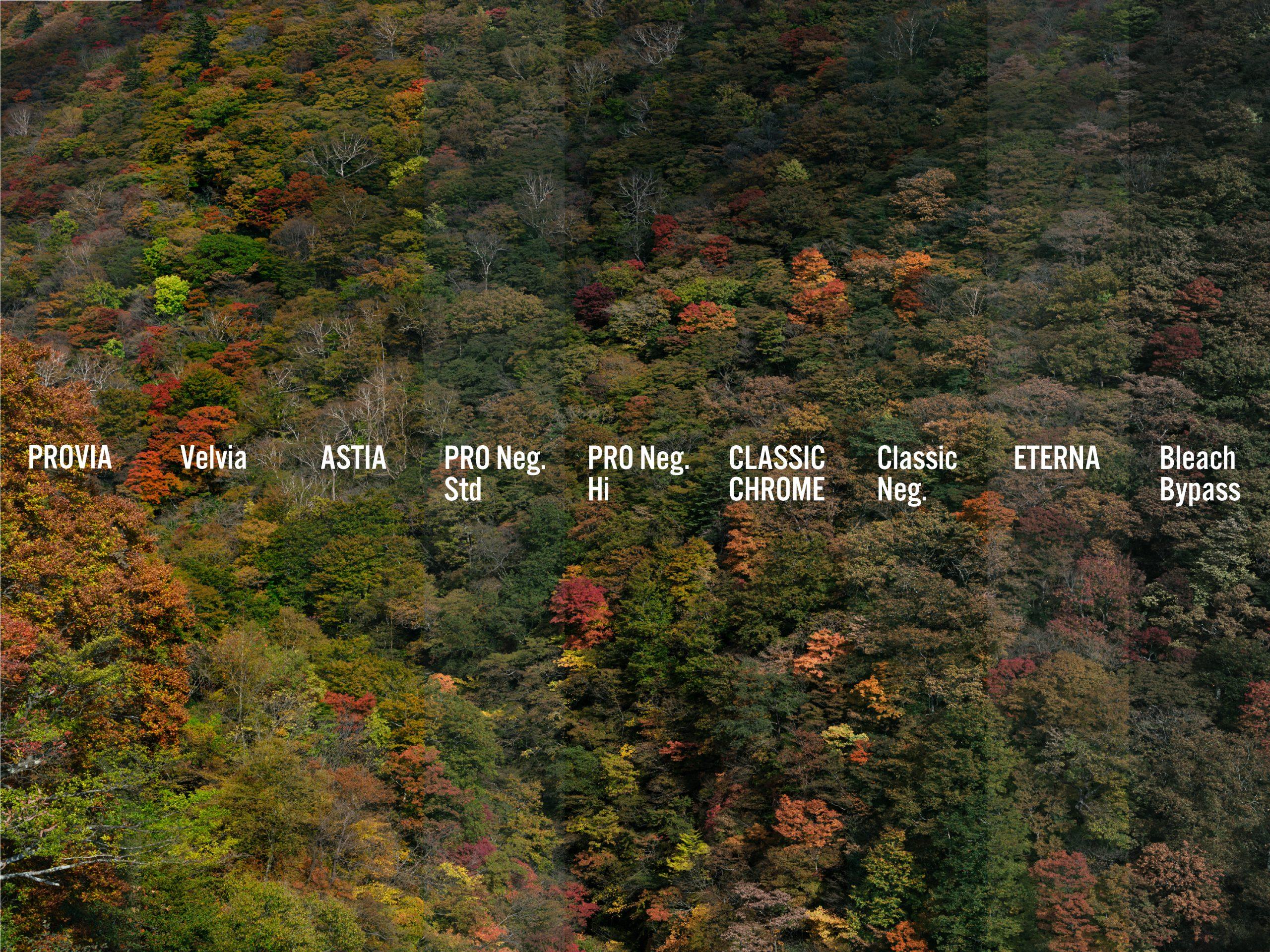 【FUJIFILM】Climb Mt.Fujifilm Day.4