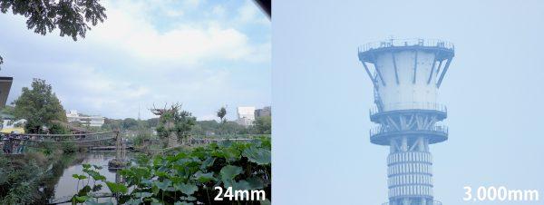 【Nikon】COOLPIX P1000で不忍池からスカイツリーを撮る