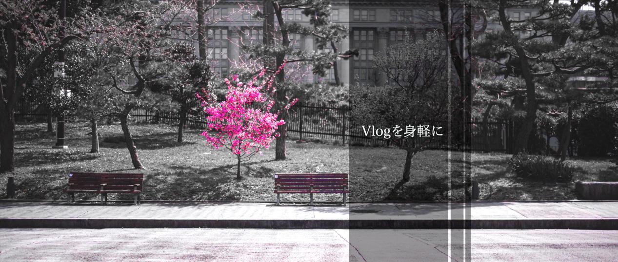 【GoPro】Vlogを身軽に〜5DMark3とマクロプラナーを携えて〜