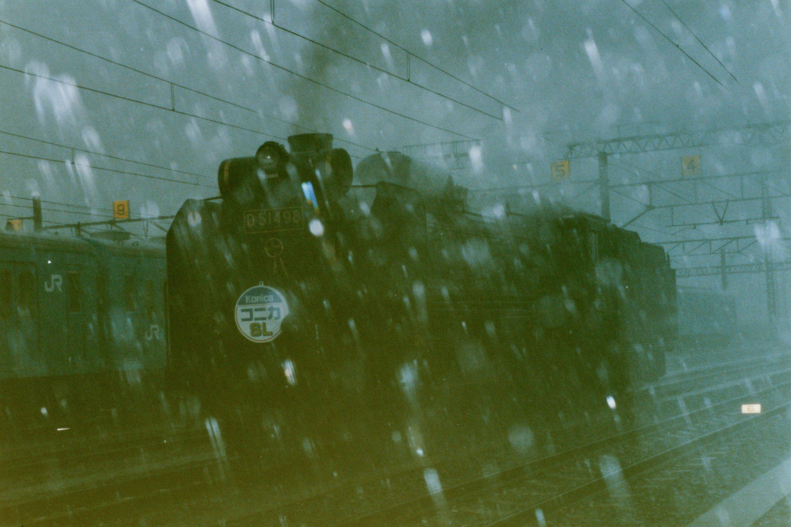 雨の撮影会
