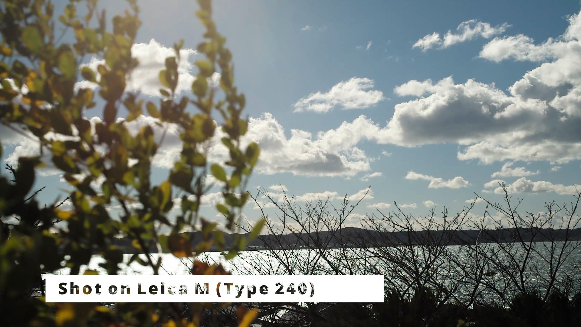 Leica M(Typ240)で南房総を撮る。
