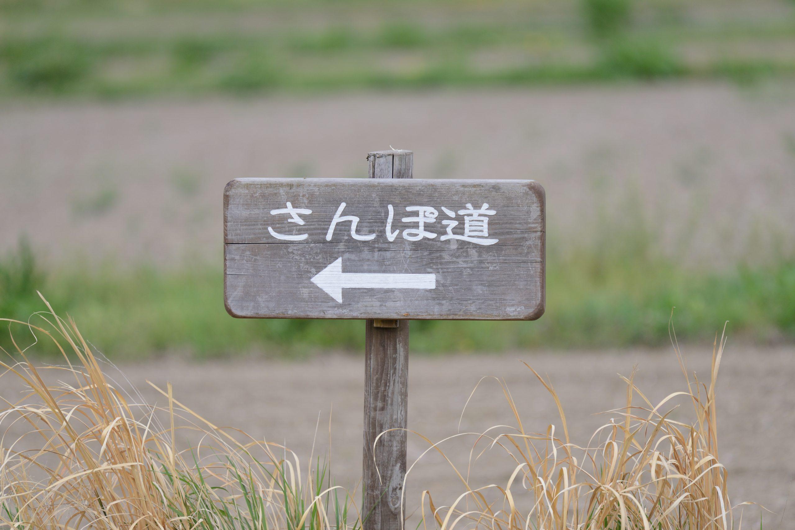 【Nikon】春の望遠スナップ