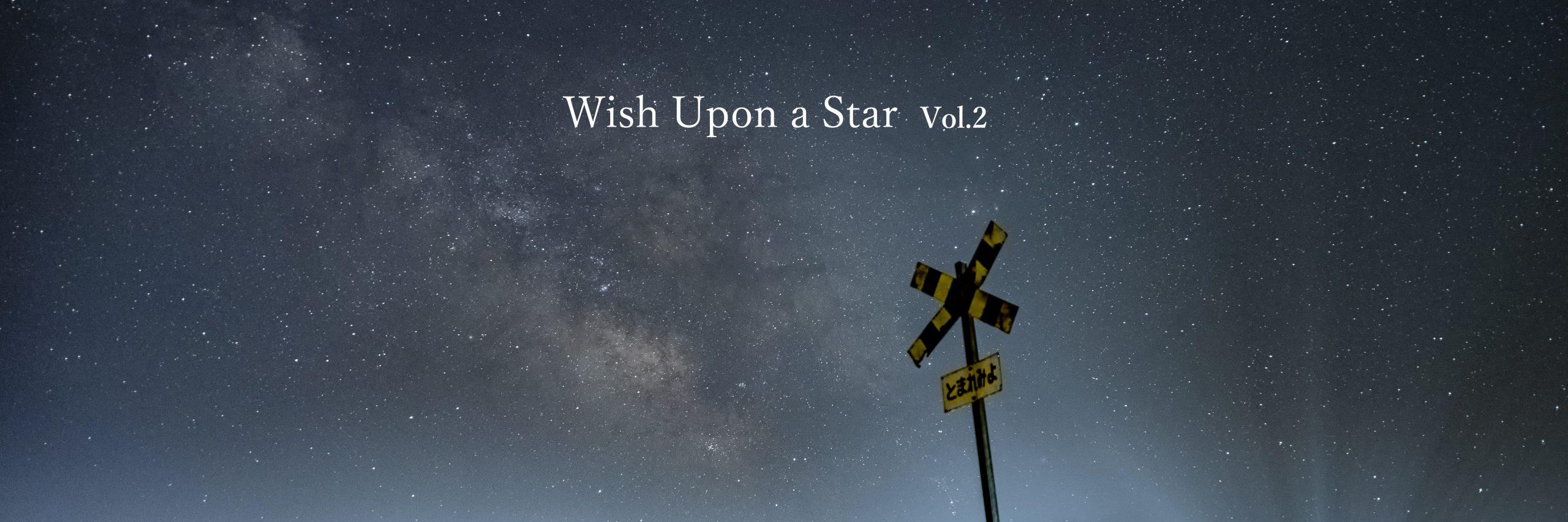 【Wish Upon a Star】Vol.2 大きなキャンパスに描く星空