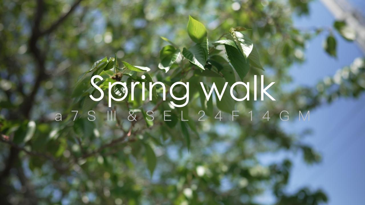 【SONY】〜Spring walk〜 春の散歩道をS-Cinetoneでシネマチックに。