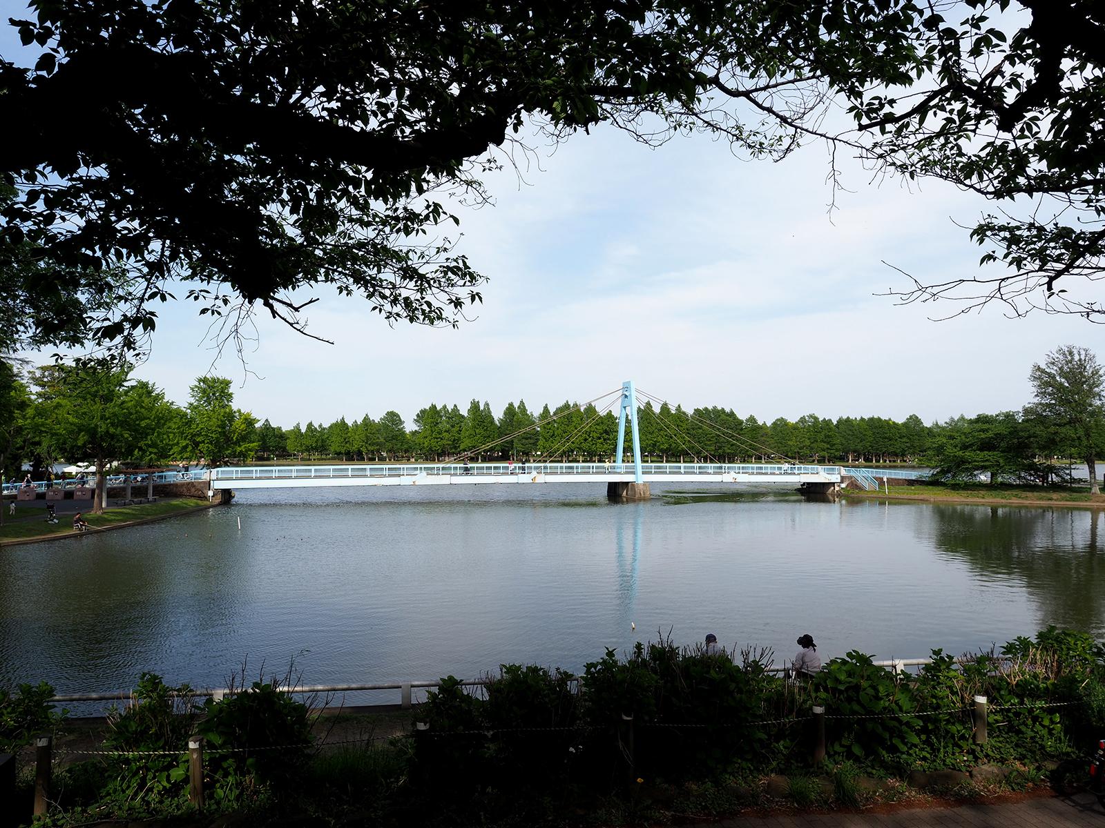 【OLYMPUS】OM-D E-M1 Mark IIで撮り歩き in 水元公園