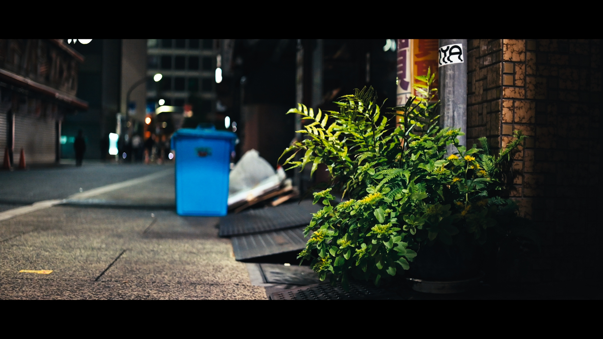 【SIRUI】アナモルフィックレンズで気分は映画監督