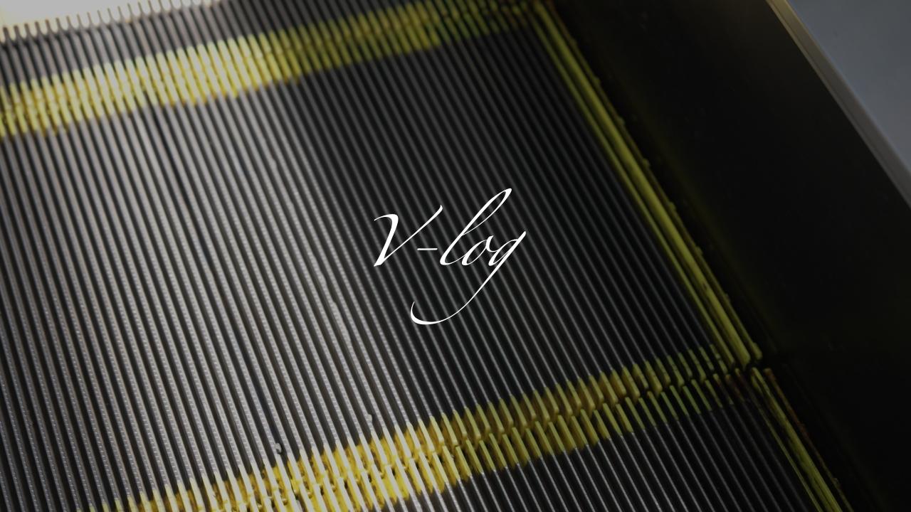 【SONY】FX3でV-log撮ってみた。