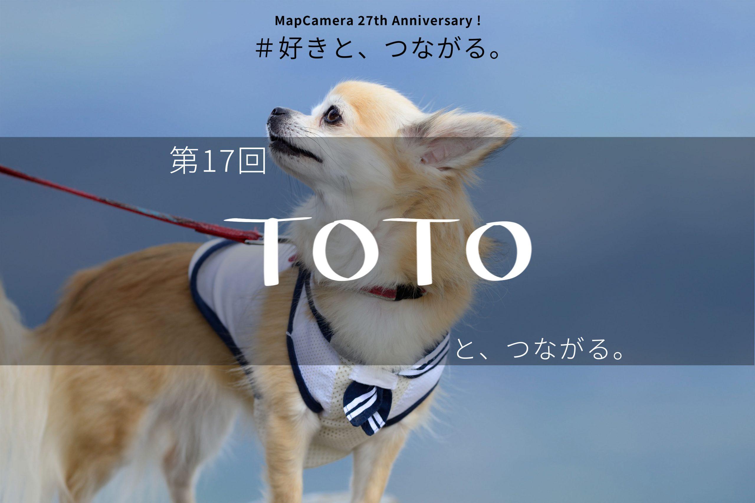 TOTOと、つながる