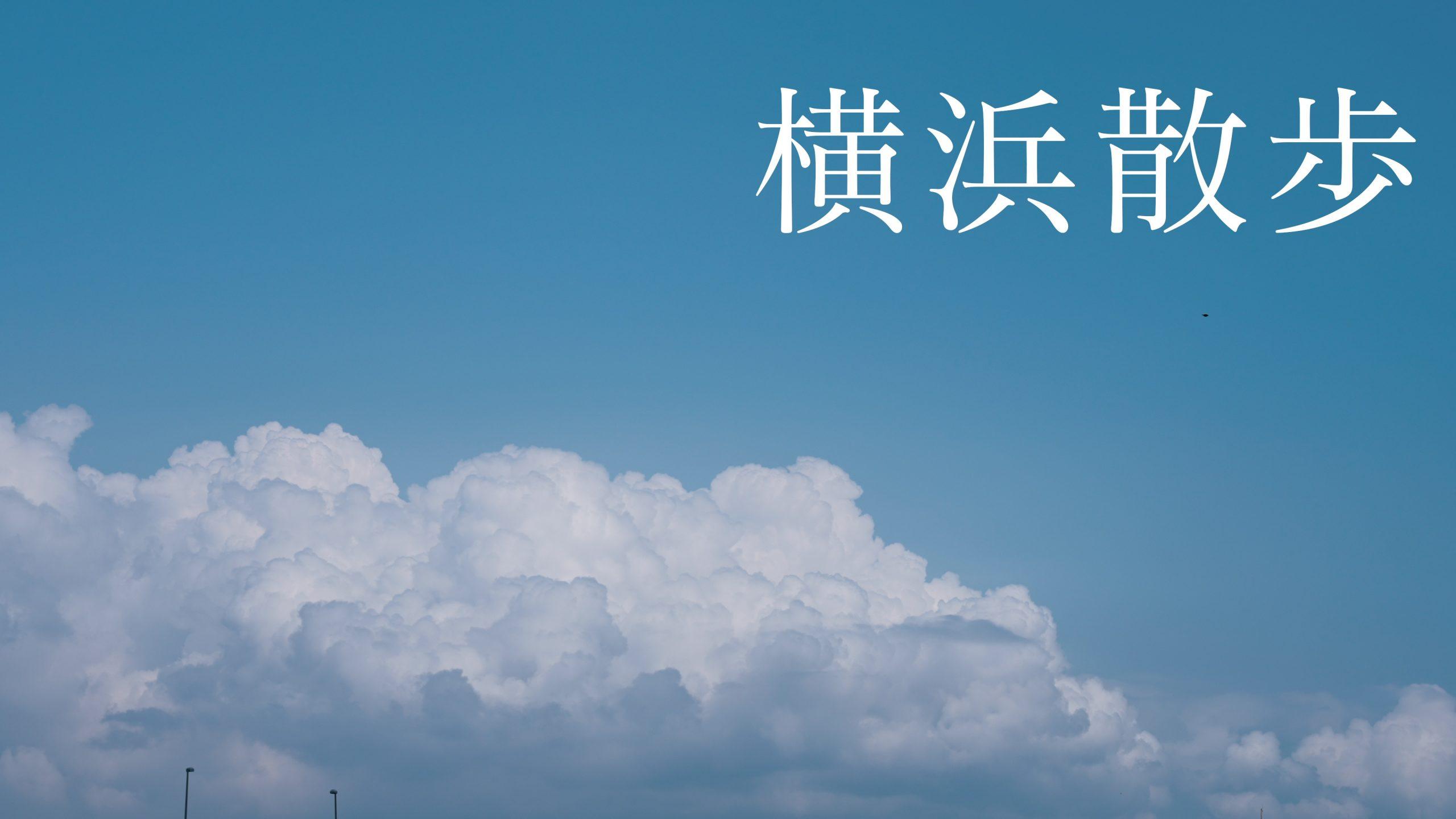 【SONY】FX3と横浜散歩