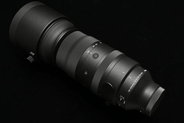 【SIGMA】新製品 Sports 150-600mm F5-6.3 DG DN ファーストインプレッション【作例あり】
