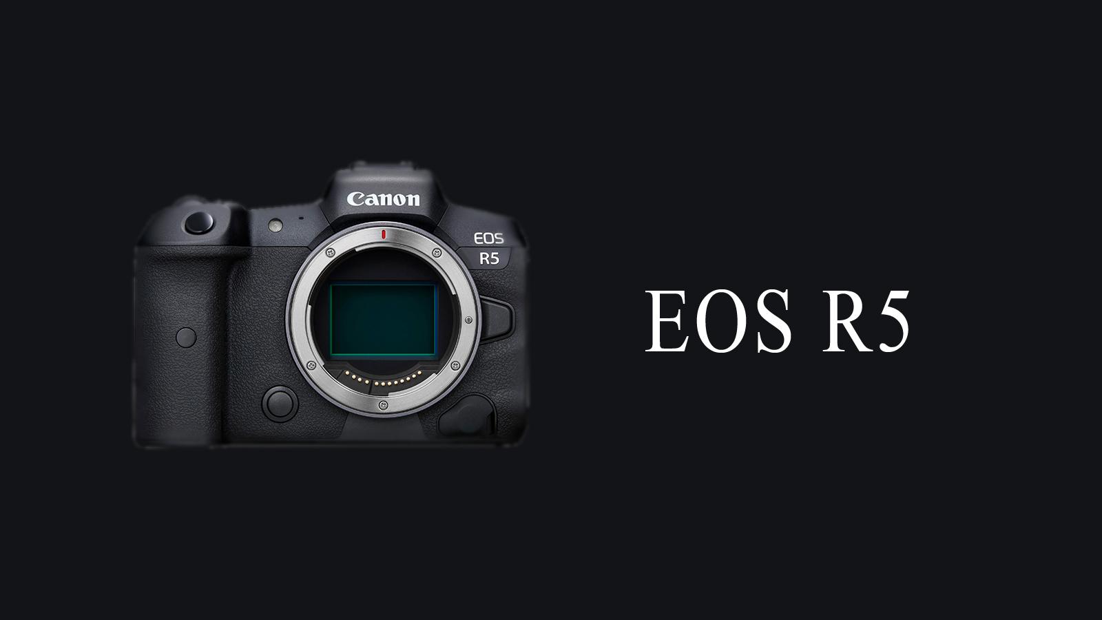 【Canon】私がEOS R5を選んだ理由