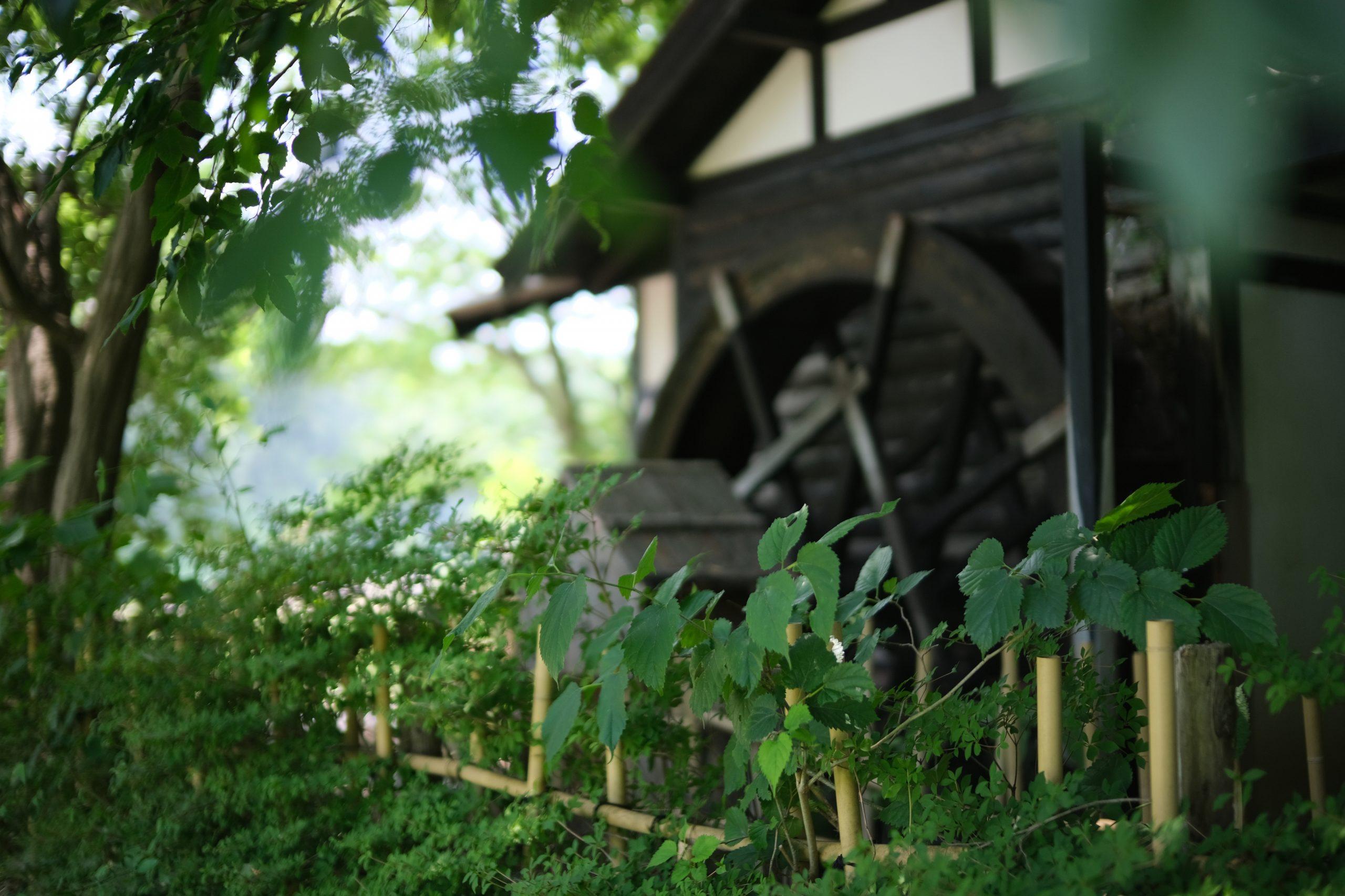 【FUJIFILM】大口径F0.95で田舎を撮る