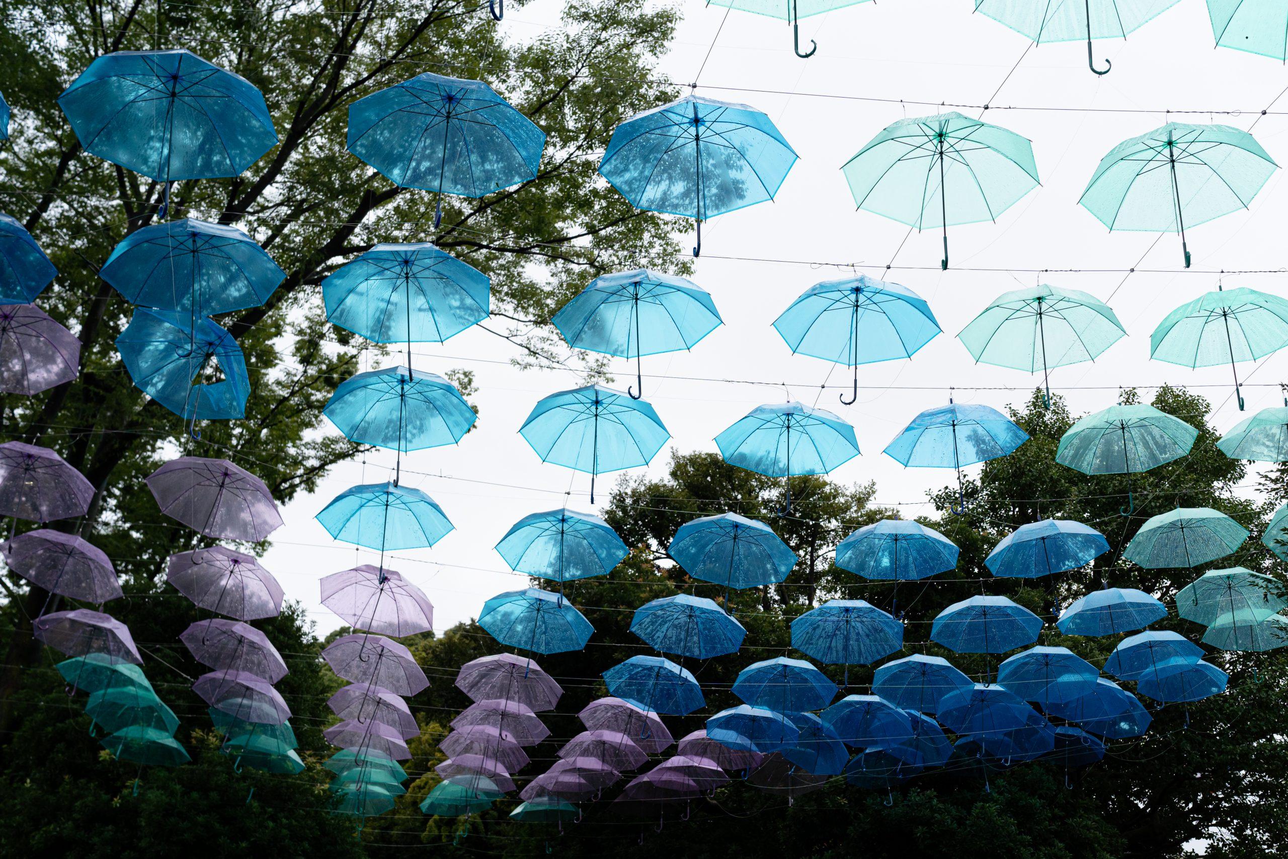 【SONY】夏の終わりの雨の日散歩