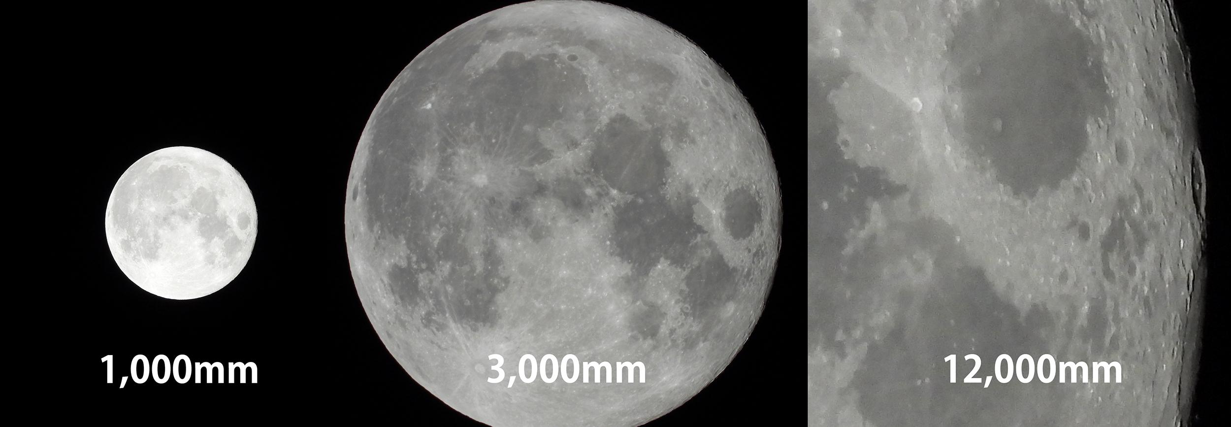 【Nikon】COOLPIX P1000で中秋の名月を撮る