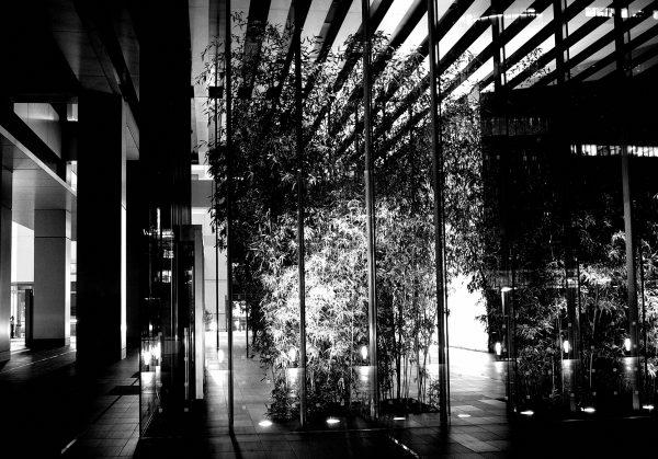 【RICOH】GR IIIで「ハイコントラスト白黒」な都内の夜を散策