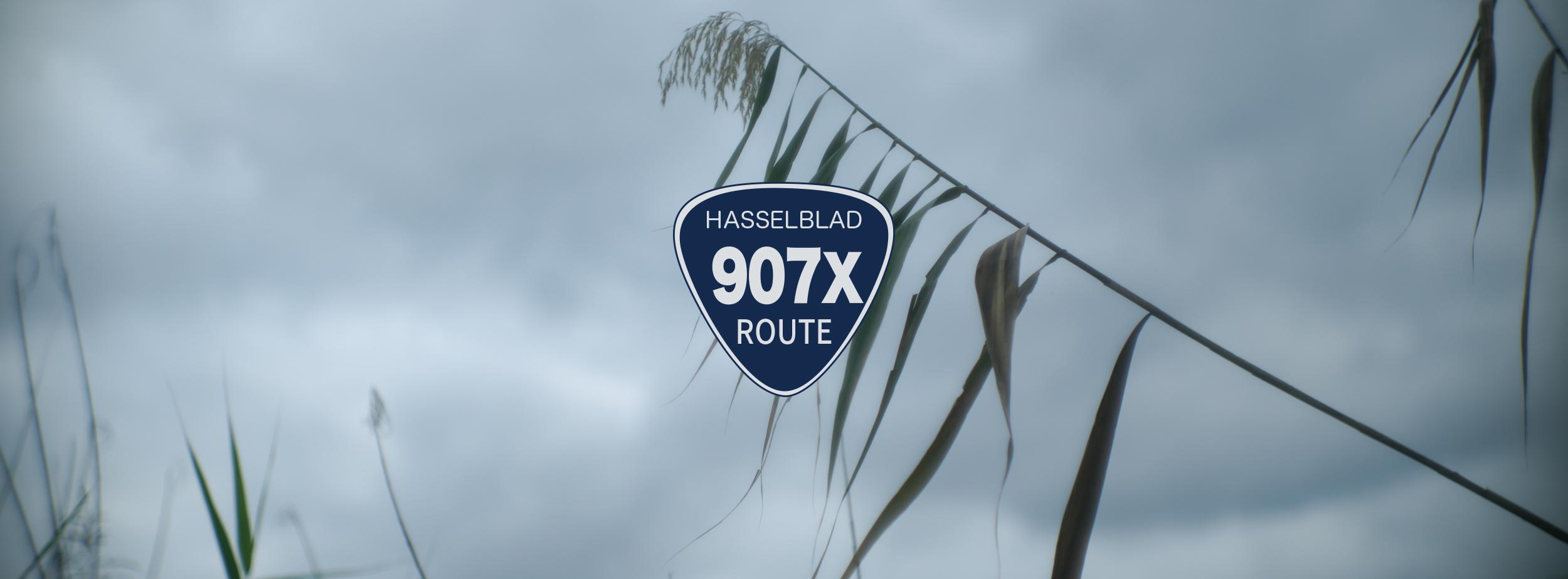 【HASSELBLAD】907の通り道