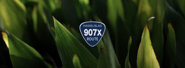 【HASSELBLAD】907の通り道 2号線