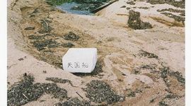 写真展のご案内 〜 藤本 篤史 写真展『カーテンコール』 〜
