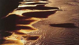 写真展のご案内 〜 写友・スウィング 第10回写真展『水彩景』 〜