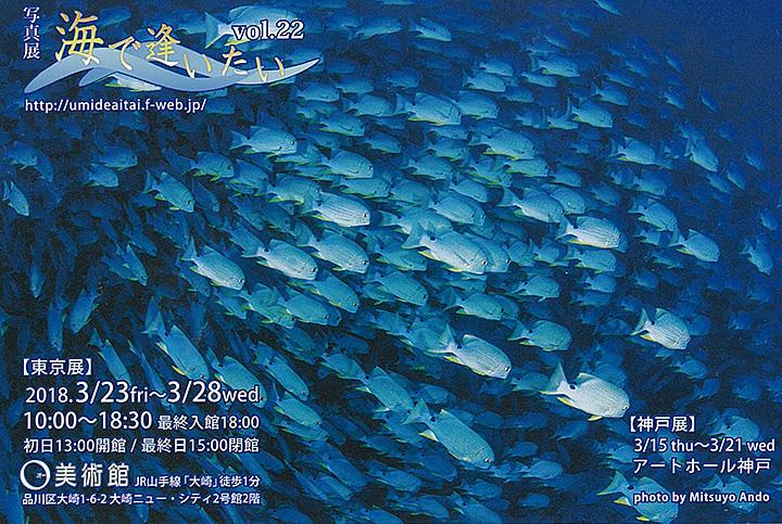 サークル「海をみつめて」 写真展『海で逢いたい Vol.22』
