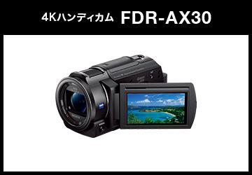 SONY (ソニー) デジタル4Kビデオカメラレコーダー HANDYCAM FDR-AX30 ブラック