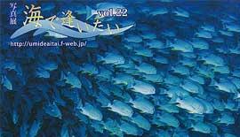 写真展のご案内 〜 サークル「海をみつめて」 写真展『海で逢いたい Vol.22』