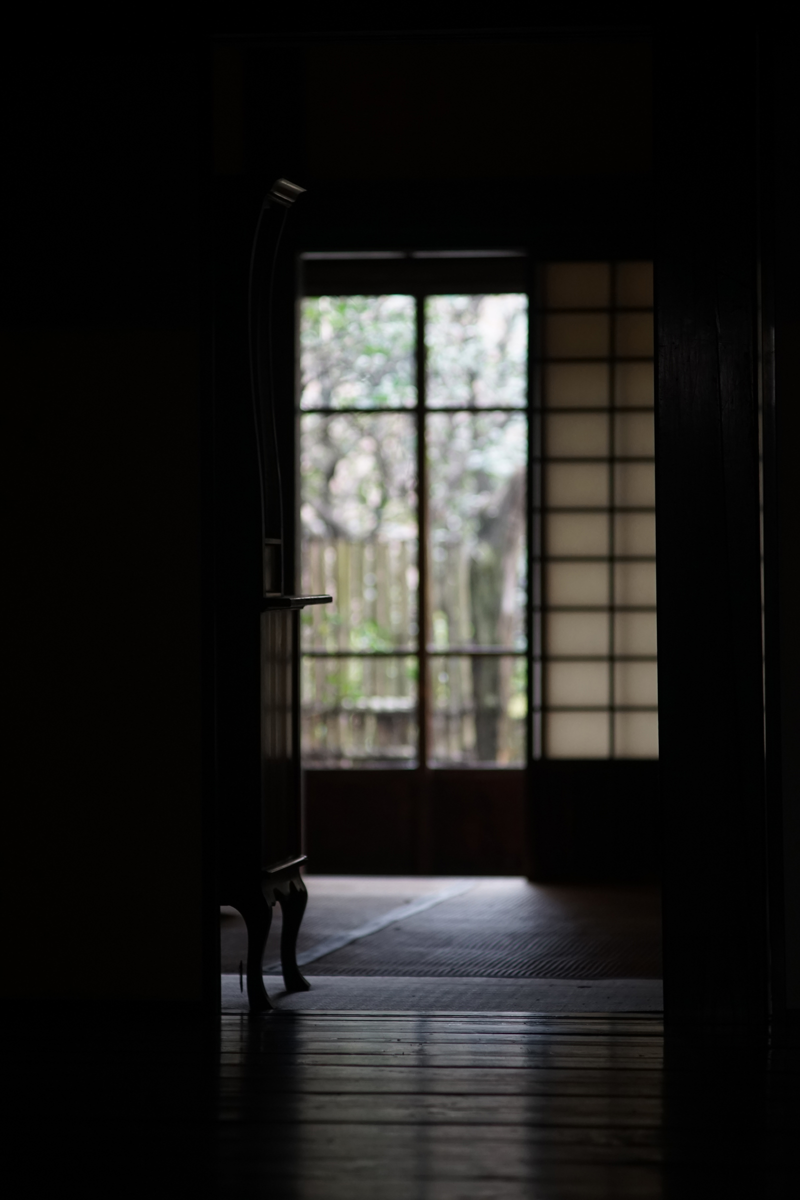 SONY a7 + CarlZeiss Sonnar 135mm F2.8