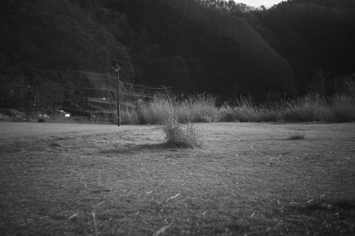 Leica M10 Monochrom + Leica Summar L50mm F2 Chrome