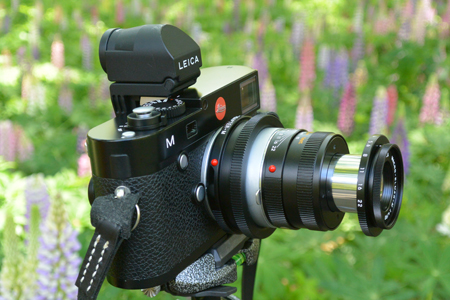 Leica (ライカ) マクロエルマー M90mm F4.0 (6bit)