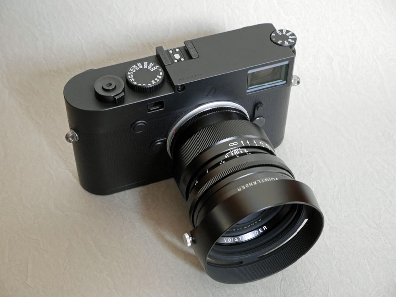 M10 Monochrom + Voigtlander NOKTON 75mm F1.5 Vintage Line Aspherical VM