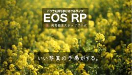 【EOS RP発売記念】いい写真の予感がする。vol. 3
