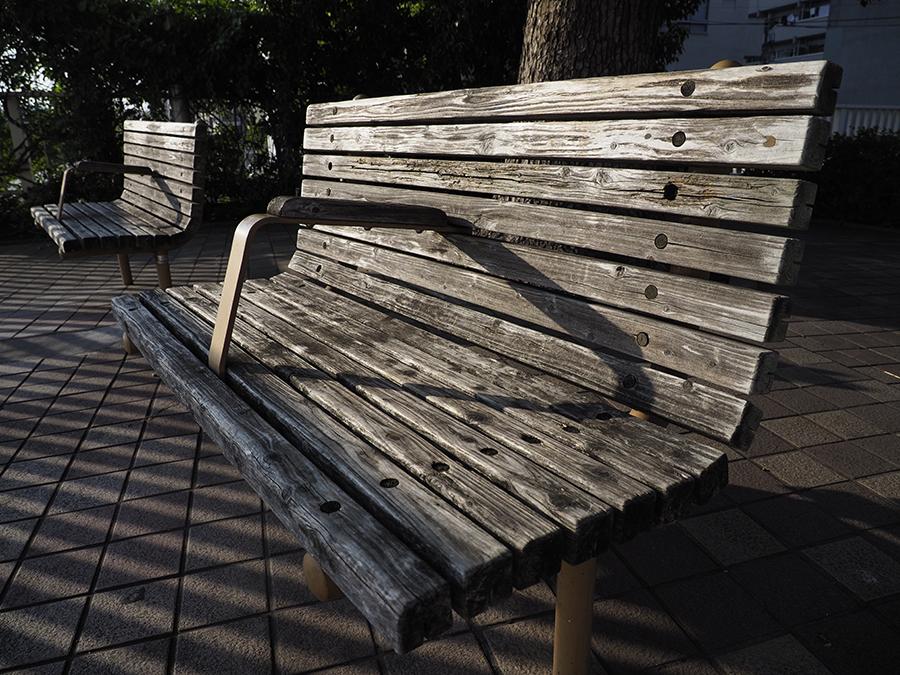 西日の当たる公園のベンチ。陰影が美しい。