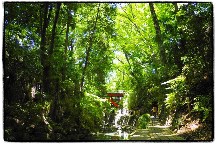 秘境 ジャングル の タイムズ ピーク 【AFKアリーナ】タイムズピークとは?探索ボーナスと施設について