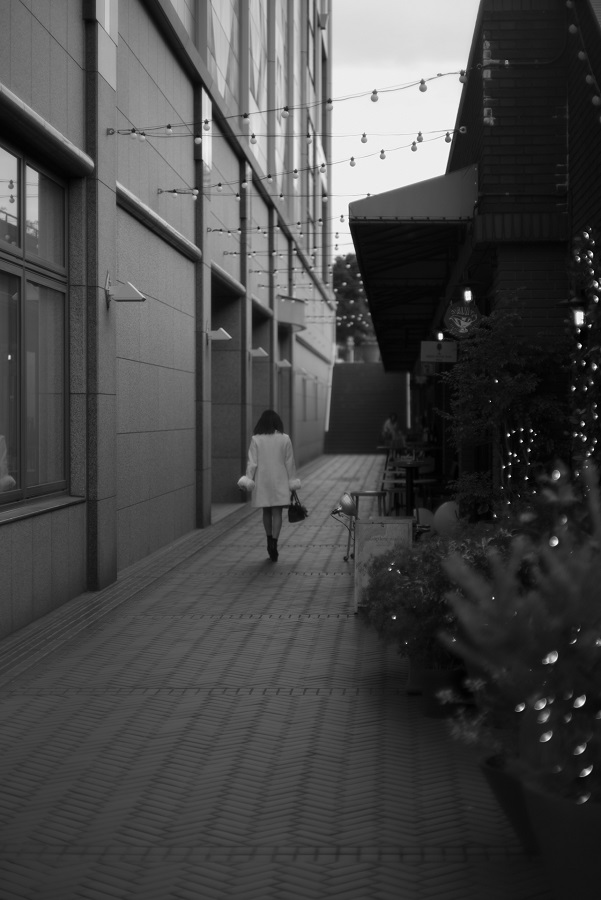 Leica M モノクローム(Typ246)+MS-Optics Sonnetar 73mm F1.5