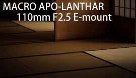 【Voightlander】MACRO APO-LANTHAR 110mm F2.5