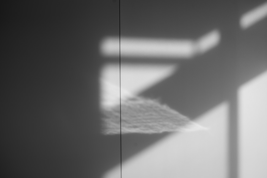 Leica (ライカ) Mモノクローム(Typ246)+ズミクロン M90mm F2 ブラッククローム)