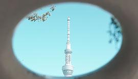 【街で見つけた形にフォーカス】α7Sと一緒に東京散歩【SONY】