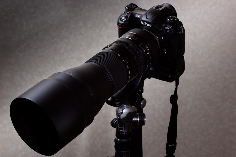 Nikon D500 + TAMRON SP 150-600mm F5-6.3 Di VC USD G2 A022N