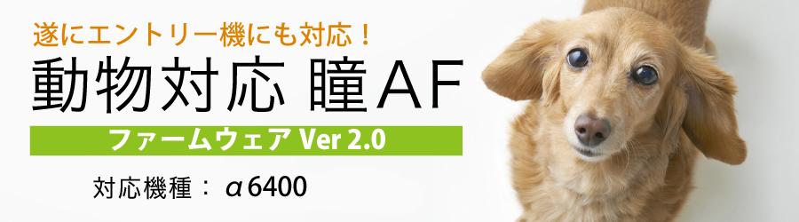 【SONY】待望の動物対応 瞳AFがα6400に実装されました!