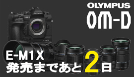 【OLYMPUS】OM-D E-M1X発売まであと2日!7-14mmを使ってみた。