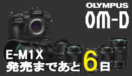 【OLYMPUS】OM-D E-M1X発売まであと6日!300mm F4 PROを使ってみた!