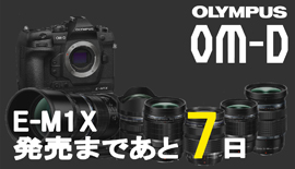 【OLYMPUS】OM-D E-M1X発売まであと7日!M.ZUIKO DIGITAL ED 12-100mm F4.0 IS PROを使ってみた!